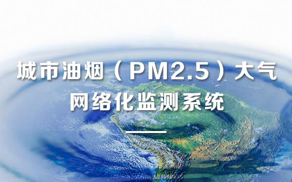 城市油烟(PM2.5)大气网络化监测系统