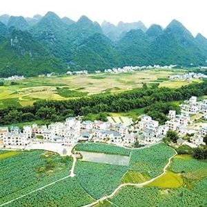 武汉环境影响评价